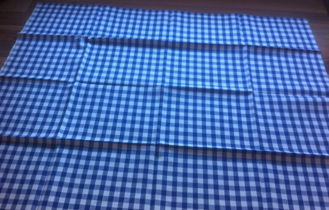 Blue Gingham Fabric
